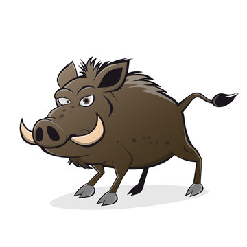 wildschwein cartoon clipart wildsau lustig