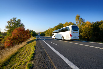 Fotobehang - White bus traveling on the road between deciduous trees in autumn colors