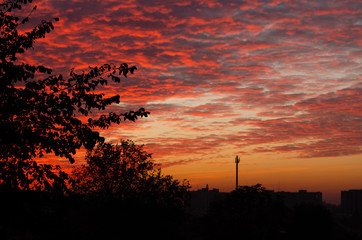 Amazing red dawn sky in the city.