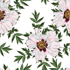 Wildflower peony flower seamless pattern isolated on white background. Wild flower for background, texture, wrapper pattern, invitation or textile.