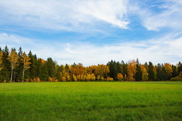 Gorgeous autumn colorful nature landscape view. Beautiful nature backgrounds. Green yellow trees and grass field on blue sky background.