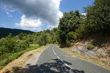Frankreich - Korsika - Straße im Naturpark Castagniccia