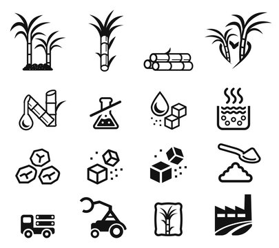 Quality sugar product from sugarcane factory (icon concept.)