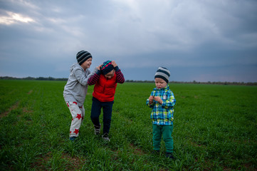 Three happy children playing in field sown with winter wheat against backdrop of rain clouds. Brothers have fun on vacation in village. Tradition of respect for nature, sports and harmonious life.