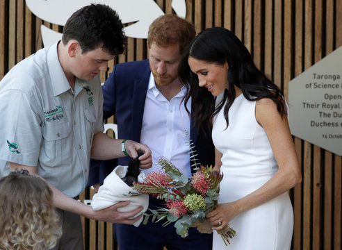 Britain's Prince Harry and Meghan, Duchess of Sussex are shown a yellow bellied glider during a visit to Taronga Zoo in Sydney