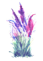 Watercolor card, greeting card with a picture of lavender, wild wildflowers, blue, purple,pink lilac. On a white background. Greeting card, invitation. Vintage watercolor element.Bouquet of flowers