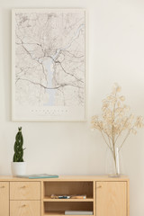 Vertical view of map, flower in a glass vase and green plant in white pot on wooden shelf, real photo