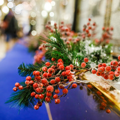 Image of New Year branch of fir tree with red berries