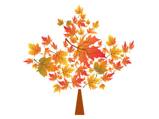 autumn maple leaves symbol