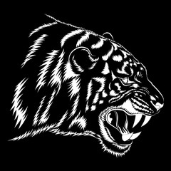 Vector white images of a tiger on a black background.