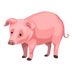 Farm pig icon. Cartoon of farm pig vector icon for web design isolated on white background