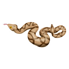 Rattlesnake icon. Cartoon of rattlesnake vector icon for web design isolated on white background