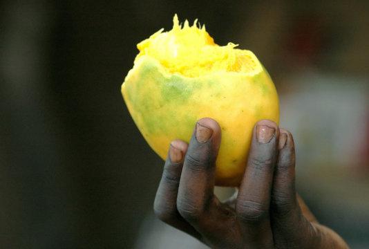 Mangue dans la mains d'un enfant africain, Burkina Faso, Afrique