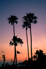 Sunset Beach Scene, Laguna Beach, California
