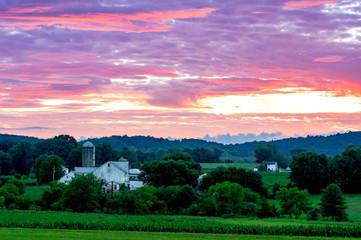 Wall Mural - Rural Farmland Under Sunset Sky