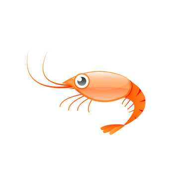 Red shrimp cartoon icon. Seafood clipart isolated on white background