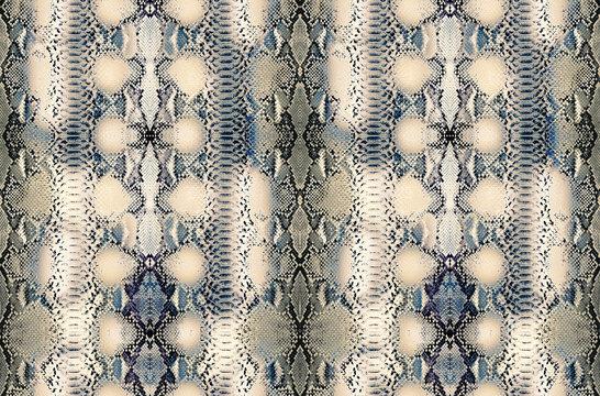 Snake skin background, Reptile seamless texture. Animal print