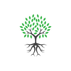 Tree wellness logo icon design template vector illustration