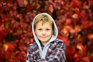Autumn is time for back to school. Little schoolboy. Little child enjoy autumn season. Adorable child on autumn landscape. Hello autumn