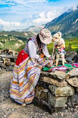 Peruanerin mit Alpaka Baby hoch in den Anden in Peru