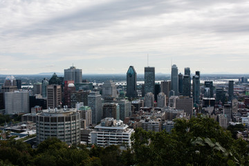 Downtown Montreal from Mont-Royal parc