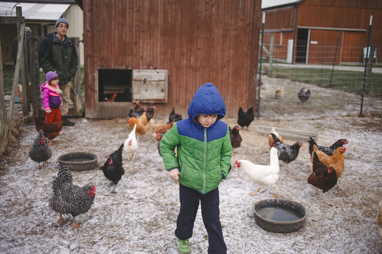 Family with chickens in backyard during winter