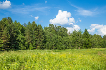Summer landscape in sunny day. Beautiful landscape with blue sky, big white clouds and a forest.