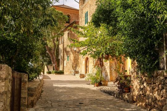 Empty narrow street in Palma de Mallorca.