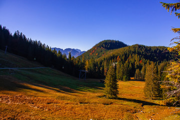 The joy of autumn colors in the Bavarian mountains.