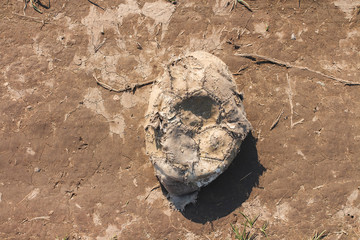 Old worn deflated football ball abandoned in the dirt