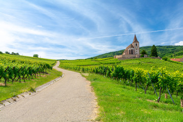 road between vineyards and old church in Hunawihr village in Alsace, France