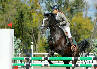 Black horse and girl in uniform at show jumping competition. Equestrian sport background. Sunny day.