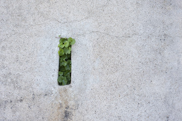 drain de mur de soutènement