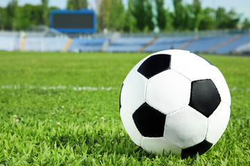 Soccer ball on fresh green football field grass. Space for text