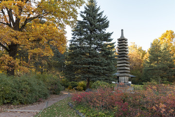 ancient japanese pagoda in autumn park