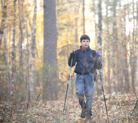 Nordic walking. Portrait of child in an autumn. Child having fun in the sunny fall park. Walking through trees