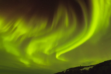 aurora borealis looks like phoenix display directly above the head in Iceland