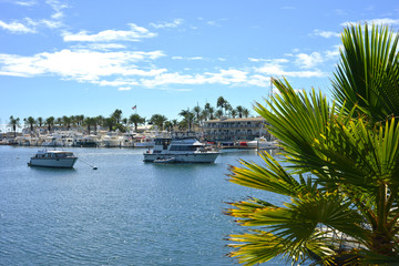 Newport Beach California USA Yacht Harbour