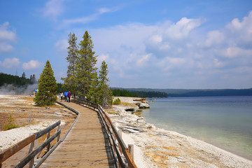 Boardwalk trail at West Thumb Geyser Basin, a trail full of hot springs & dormant lakeshore geysers, formed about 150,000 years ago.  West Thumb is located in Yellowstone National Park, Wyoming, USA.