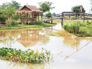 Bamboo hut and wooden bridge with fish trap in the river.