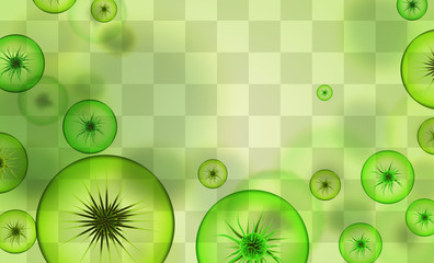 vector background of viruses and bacteria