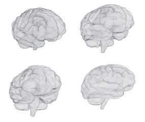 set three-dimensional vector cyber brain. neural network mega-data processing, template interface design