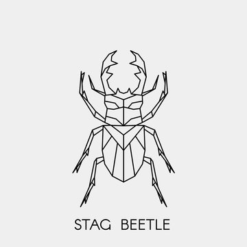 Geometric stag beetle. Polygonal linear abstract bug. Vector illustration.
