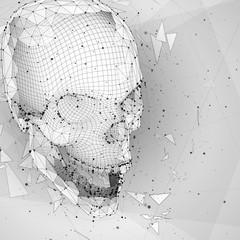 3d vector human skull of all segments explodes.