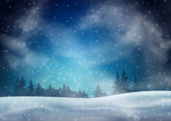 Winter Night Landscape