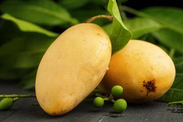 Ripe yellow Mango on dark wooden background.