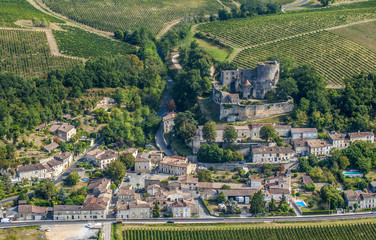 "France, Gironde, right side of the Garonne river, Entre-deux-Mers, Langoiran, vineyard of the Appellation d'Origine Controlee (French certification AOC, ""protected designation of origin"") premieres cotes de Bordeaux and fortified castle"