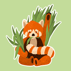 Illustration Of The Red Panda. The main character for all children! This cute creation will easily fit into any interior of the children's room!