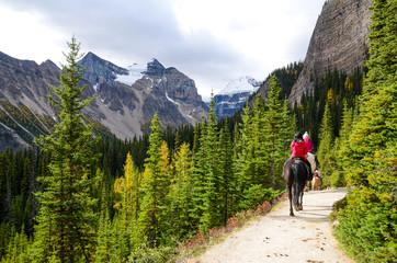 秋のカナディアンロッキー レイク・アグネス・トレイルでの乗馬 レイク・ルイーズ周辺(バンフ国立公園 カナダ・アルバータ州) Papier Peint