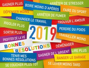 Carte de vœux 2019 présentant une liste de bonnes résolutions écrite sur des étiquettes de couleurs.